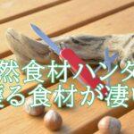 谷村圭太の天然食材ハンターとは何者?活動や著書が知りたい。