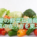 小堀夏佳の野菜伝道師としての活動は?実績やヒット商品が気になる。
