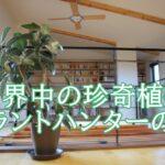 竹岡篤史(植物バイヤー)の珍奇植物の世界。滝藤賢一の師匠でも!販売やお店は?