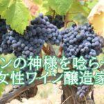 斎藤まゆの経歴やワイナリーは?最優秀ソムリエが唸るワインが知りたい。