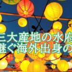 飯島實とジェフ・ラッジは水府提灯職人。家族から弟子へ!工房や作品は?