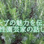 杉井志織はハーブを勧める園芸研究家。年齢や著書は?話し方も魅力的。